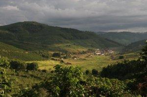 Coffee-Fazenda-Recreiro-in-Pocos-de-Caldas-in-Brazil1