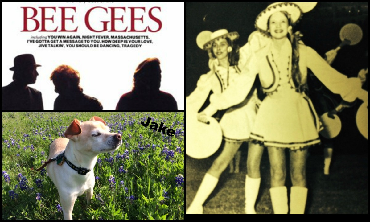 WHAT DO THE BEE GEES, JAKE THE WONDER DOG AND A 70'S DRILL TEAM LIEUTENANT HAVE IN COMMON?